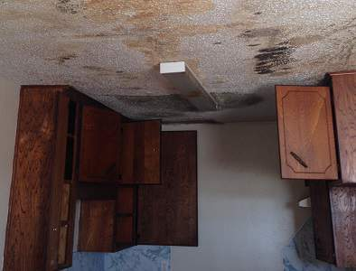 Mold Removal in Killeen Texas